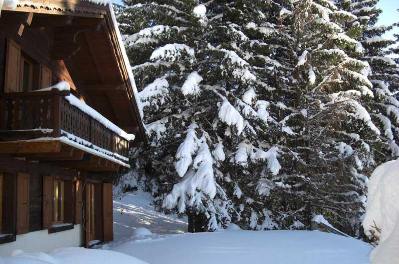 Swiss Chalet In Gryon Switzerland